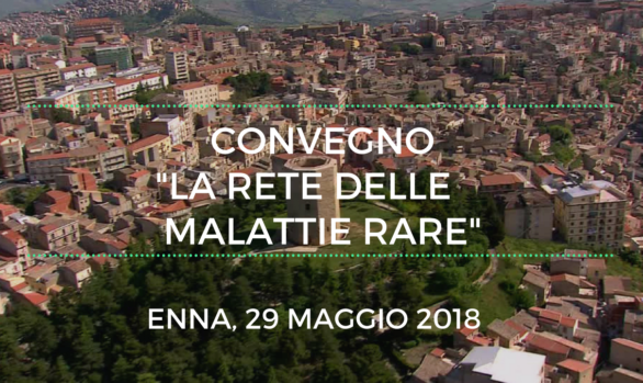 "Conference ""The network of disease rare""  ASP Enna"